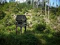 Kierunek Skalne grzyby - panoramio.jpg