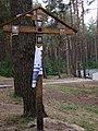 Kijów-Bykownia, zbiorowe mogiły w lesie - collective graves in deep forest - panoramio (1).jpg