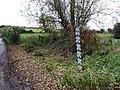 Kings Somborne - Ford - geograph.org.uk - 1030071.jpg
