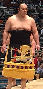 Kizenryu 2015 March.JPG