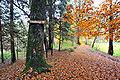 Klagenfurt Annabichl Trettnig Weg zum Schloss Falkenberg 10112009 66.jpg