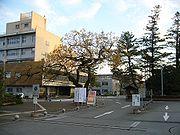 Kochi University.jpg