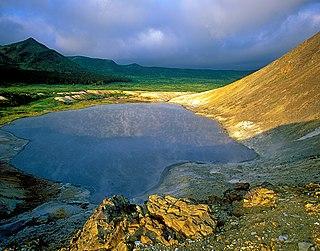Kurils Nature Reserve