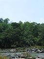 Kuruva Island.jpg