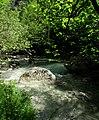 L'inaccessible grotte des Sadoux, vallée de la Courance, Drôme, France 04.jpg