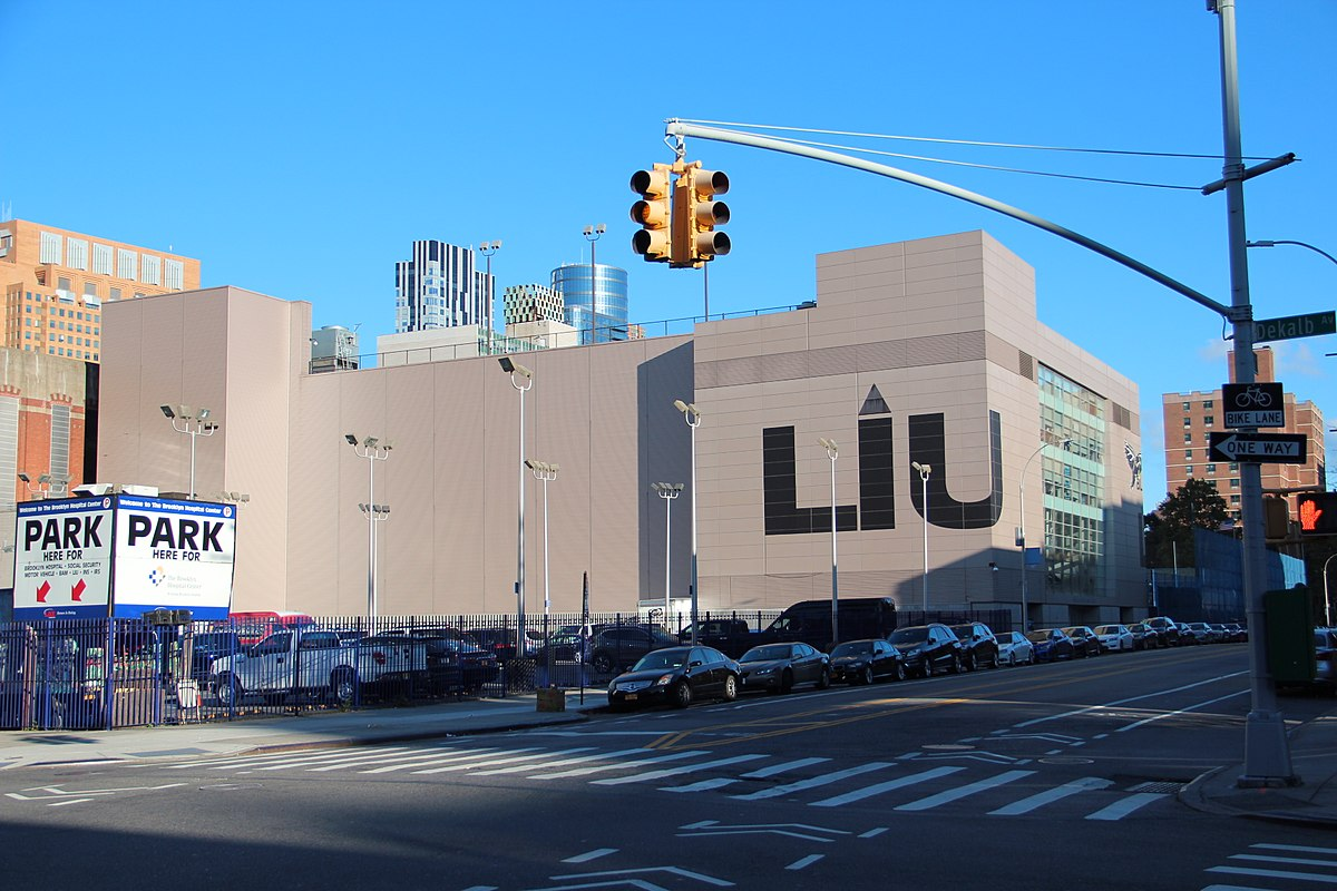 Long Island University Brooklyn Out Of State Tuition