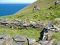 Lag ny Keeilley, Keeill on Cronk ny Arrey Laa - geograph.org.uk - 179599.jpg