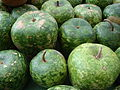 Lagenaria siceraria Ornamental Apple Gourds - Circleville Ohio ~ Pumpkin Show 2011.jpg