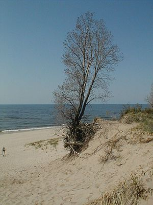 Lake Michigan 1