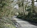 Lane to Cloford Common - geograph.org.uk - 1191487.jpg