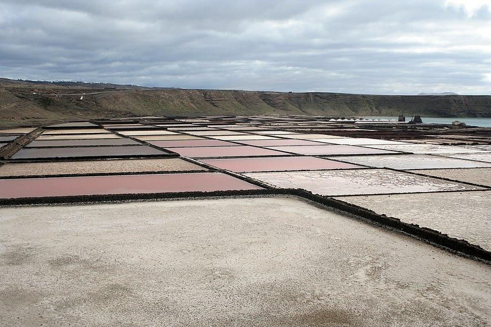 Lanzarote salt pans