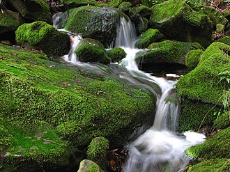 Alamo, California - A small cascade in the Las Trampas Regional Wilderness west of Alamo.