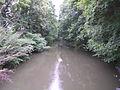 Leithakanal in Götzendorf an der Leitha 02.jpg