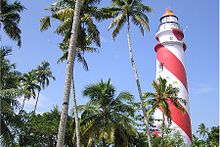 Red-and-white-striped lighthouse, behind a stand of palm trees