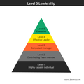 Level-5-leadership-matrix.png