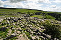 Limestone pavement above Malham Cove (5831).jpg