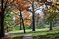 Linda Hall Library Arboretum.JPG