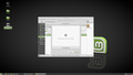 Linux Mint 18.2 issue.png