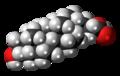 Lithocholic acid molecule spacefill.png