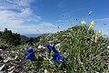 Little Fatra, Slovakia 12.jpg