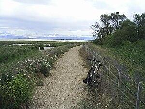 Little River Rail Trail - The trail next to Kaituna Lagoon, between Motukarara and Catons Bay.