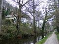 Llangollen Canal - geograph.org.uk - 1243904.jpg