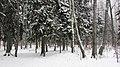 Lobnya, Moscow Oblast, Russia - panoramio (494).jpg