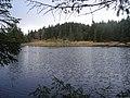 Lochan in forestry northeast of Oban and northwest of Glencruitten summit - geograph.org.uk - 352556.jpg