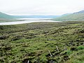 Lochs Craggie and Loyal from high point on road - geograph.org.uk - 492113.jpg
