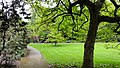 London, UK - panoramio (421).jpg