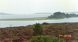 Long Island (Dorset) - Image: Long Island across Wych Channel geograph.org.uk 449745