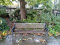 Long shot of the bench (OpenBenches 2286-1).jpg