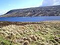Looking towards Loch Merkland - geograph.org.uk - 172595.jpg