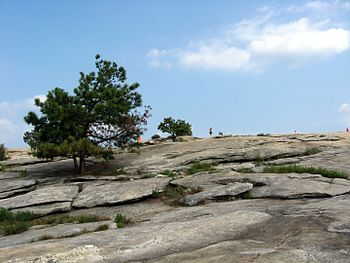 Looking up on Stone Mountain