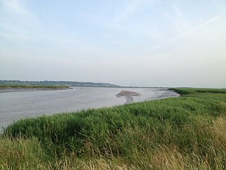 Faxfleet - Looking west from the river bank at Faxfleet