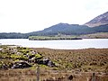 Lough Inagh - the northern end - geograph.org.uk - 1291445.jpg