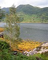Low tide at Loch Hourn - geograph.org.uk - 189556.jpg
