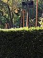 Luz, música y creatividad inundan el Sitio de El Retiro y El Prado en Luna de Octubre (03).jpg