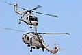 Lynx - RIAT 2006 (2391925653).jpg
