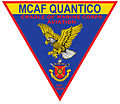 MCAF Patch 2015.jpg