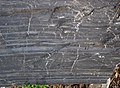Magnetite banded iron formation (Soudan Iron-Formation, Neoarchean, ~2.69 Ga; Rt. 169 roadcut between Soudan & Robinson, Minnesota, USA) 20 (18419997223).jpg