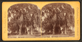 Magnolia Cemetery, N.E. Society's Lot, B, from Robert N. Dennis collection of stereoscopic views.png