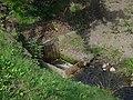 Malá říčka, vtok do podzemního úseku (01).jpg