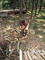 Man cutting the wood piece.jpg