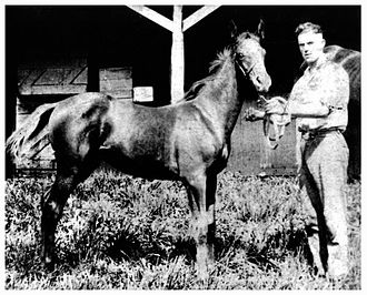 Midway, Kentucky - Racehorse Man o' War with Midway, Kentucky trainer Joseph Bryan Martin.