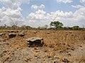 Mandiana Prefecture, Guinea - panoramio.jpg