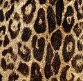 Marmot fur jacket, printed, c. 1980 (2).jpg