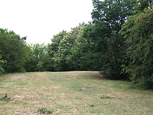 Blowup - Place of murder – Maryon Park, London