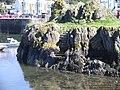 McCooks Craig in Portpatrick harbour - geograph.org.uk - 930876.jpg