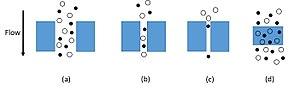 Membrane gas separation - (a) Bulk flow through pores; (b) Knudsen diffusion through pores; (c) molecular sieving; (d) solution diffusion through dense membranes.